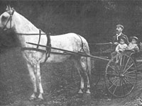 Dianna Cook married Owen Farnan in Londonderry in 1845. An heir shows off his horse and children. Shelley Farnan Clattenburg